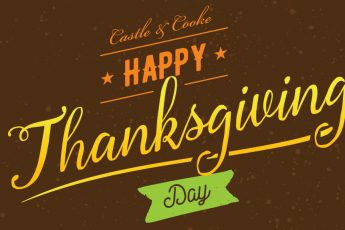 Castle & Cooke: Happy Thanksgiving Day